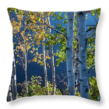 Throw Pillow featuring the photograph Birches On Lake Shore by Elena Elisseeva