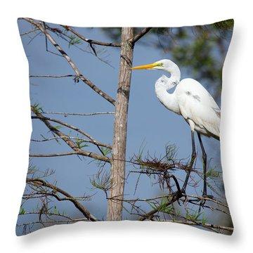 Bird 154 Throw Pillow