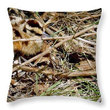 Bird Banding - Woodcock Throw Pillow