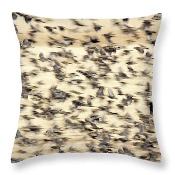Bird Blizzard Throw Pillow