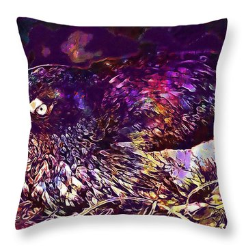 Bird Cassins Auklet Crested Birds  Throw Pillow
