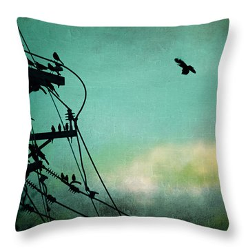 Throw Pillow featuring the photograph Bird City Revisited by Trish Mistric