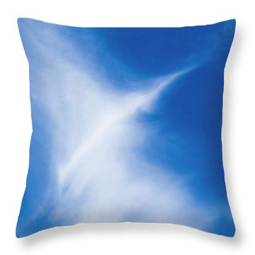 Throw Pillow featuring the photograph Bird Cloud by Yulia Kazansky