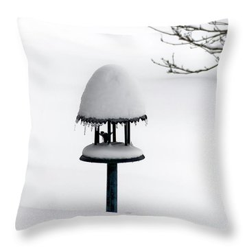 Bird Feeder In Snow Throw Pillow