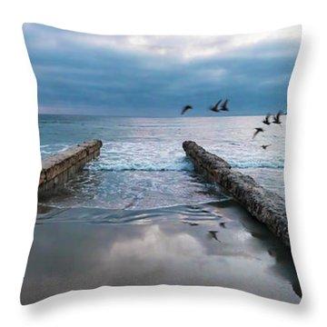 Throw Pillow featuring the photograph Bird Flight by Dan McGeorge