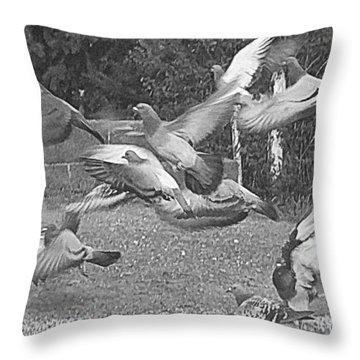 Bird Flurry Throw Pillow