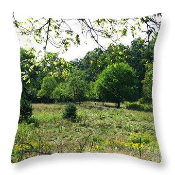 Bird Grounds Throw Pillow