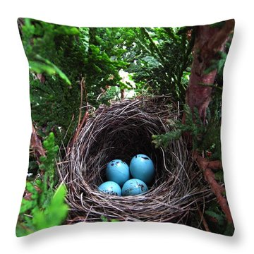 Bird Home Throw Pillow by Shirley Sirois