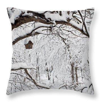 Bird House In Snow Throw Pillow
