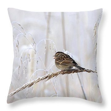 Bird In First Frost Throw Pillow