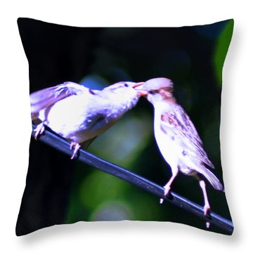 Bird Kiss Throw Pillow by Bill Cannon