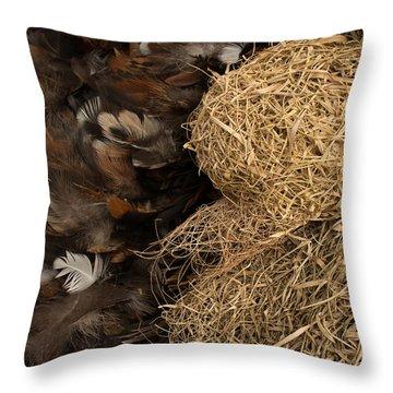 Bird Nest And Feathers Throw Pillow by Jason Rosette
