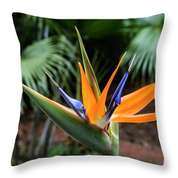 Bird Of Paraadise Throw Pillow