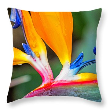 Bird Of Paradise After The Rain Throw Pillow