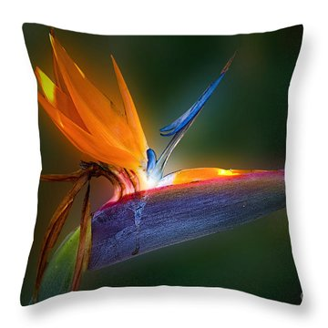Bird Of Paradise Throw Pillow by Bonnie Barry