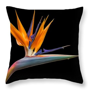 Bird Of Paradise Flower On Black Throw Pillow