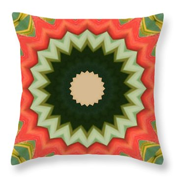 Throw Pillow featuring the photograph Bird Of Paradise Kaleidoscope by Bill Barber
