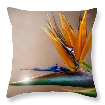 Bird Of Paradise Throw Pillow by Patrick Boening