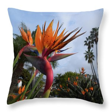 Bird Of Paradise Peace And Joy Throw Pillow