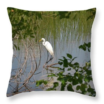 Throw Pillow featuring the photograph Bird On A Branch by Carol  Bradley