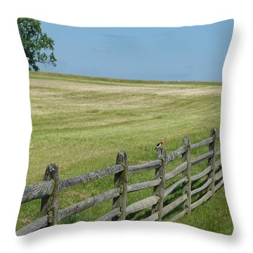 Bird On A Fence Throw Pillow by Donald C Morgan