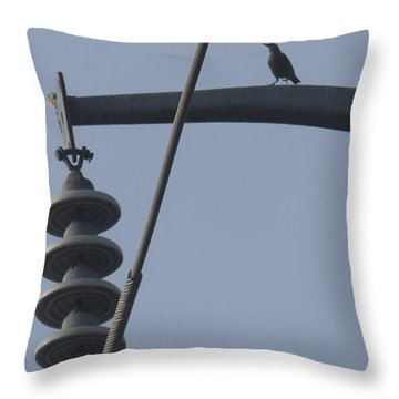 Bird On A High Wire Throw Pillow