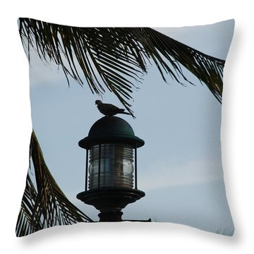 Bird On A Light Throw Pillow by Rob Hans