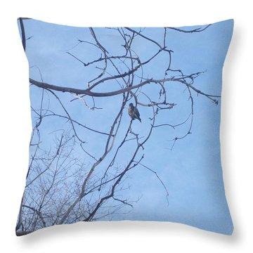 Bird On A Limb Throw Pillow by Jewel Hengen