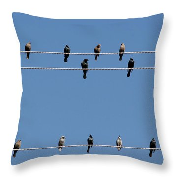Bird On A Wire Throw Pillow by Christine Till