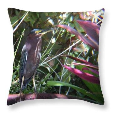 Bird On Bath Throw Pillow