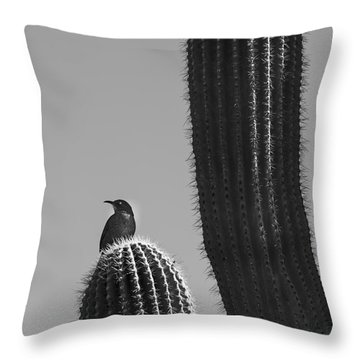 Throw Pillow featuring the photograph Bird On Cactus by Richard J Thompson