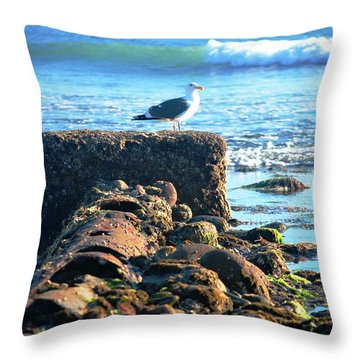 Bird On Perch At Beach Throw Pillow