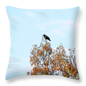 Bird On Tree Throw Pillow by Craig Walters
