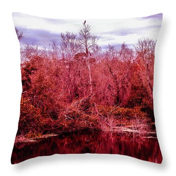 Throw Pillow featuring the photograph Bird Out On A Limb 2 by Madeline Ellis