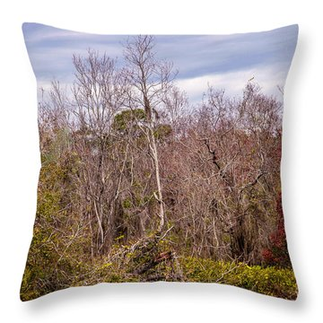Throw Pillow featuring the photograph Bird Out On A Limb 3 by Madeline Ellis