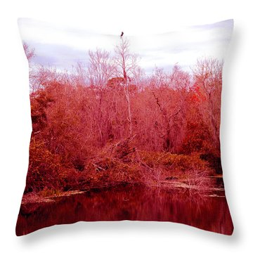 Throw Pillow featuring the photograph Bird Out On A Limb by Madeline Ellis