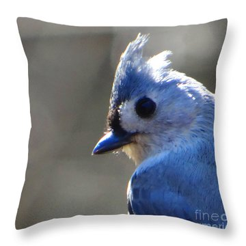Bird Photography Series Nbr 1 Throw Pillow