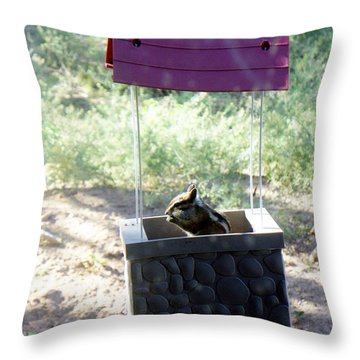 Bird Seed Thief Chipmunk Throw Pillow