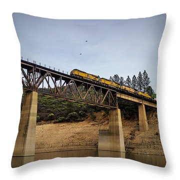 Bird Vs Train Throw Pillow