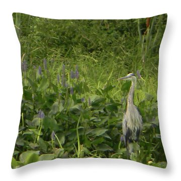 Bird Waiting Throw Pillow