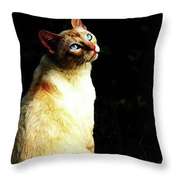 Throw Pillow featuring the photograph Bird Watcher by Kim Henderson