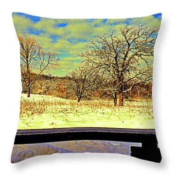Bird Watchers Bench Winter Crabtree Nature Center Cook County Il Throw Pillow