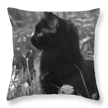 Bird Watching Throw Pillow