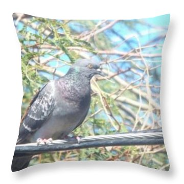 Bird Watchman Throw Pillow