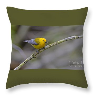 Birder's Dream Throw Pillow