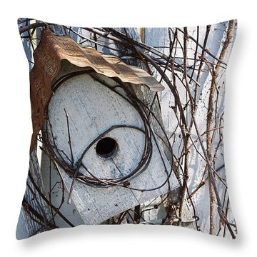 Birdhouse Brambles Throw Pillow by Lauri Novak
