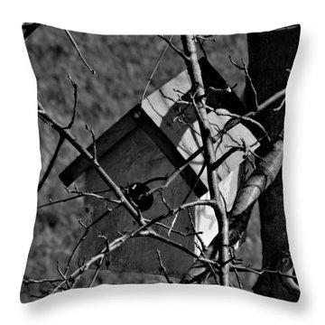 Birdhouse In Tree Throw Pillow