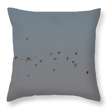 Birds And Airplane Throw Pillow