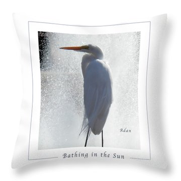 Birds And Fun At Butler Park Austin - Birds 2 Macro Poster Throw Pillow by Felipe Adan Lerma