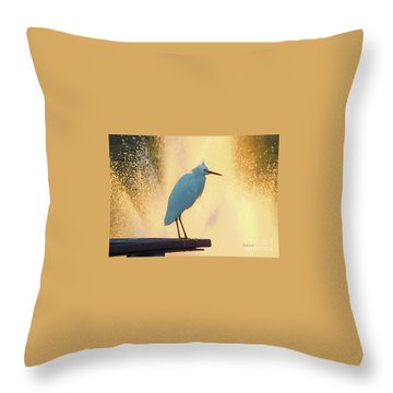 Birds And Fun At Butler Park Austin - Birds 3 Detail Macro Throw Pillow by Felipe Adan Lerma
